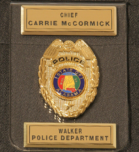 Pocket Badge Identification Badge Categories